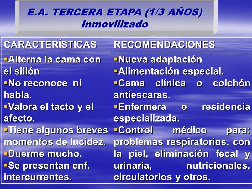 E.A. TERCERA ETAPA (1/3 AÑOS) Inmovilizado