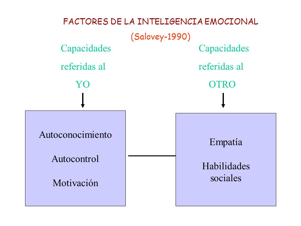 FACTORES DE LA INTELIGENCIA EMOCIONAL