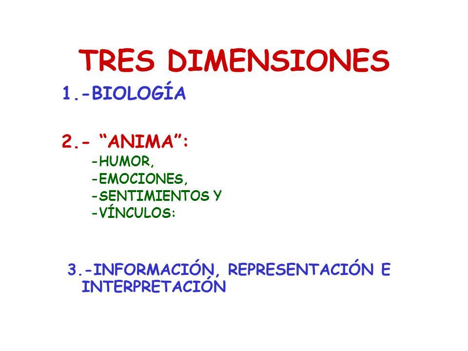 TRES DIMENSIONES 1.-BIOLOGÍA 2.- ANIMA :