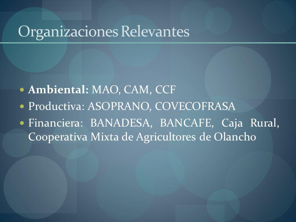 Organizaciones Relevantes