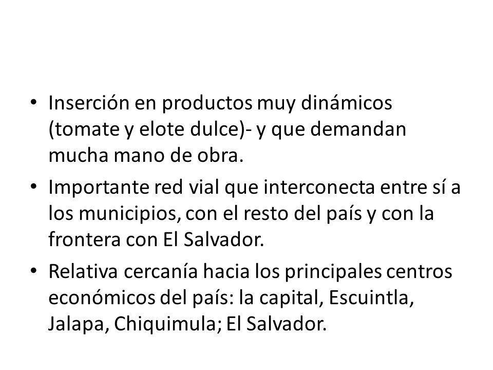 Inserción en productos muy dinámicos (tomate y elote dulce)‑ y que demandan mucha mano de obra.