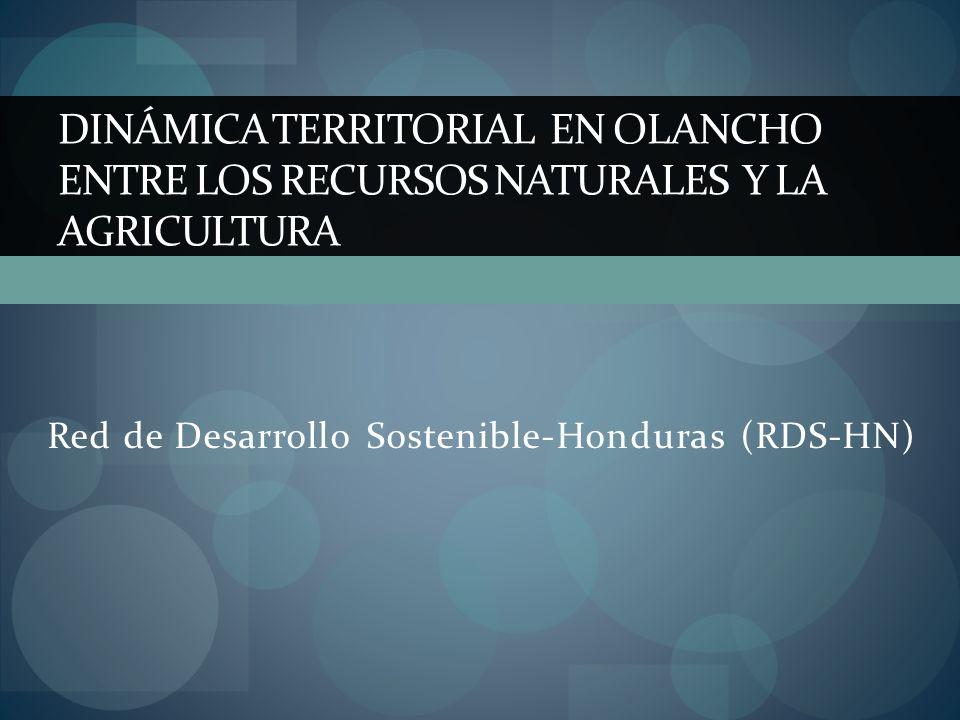 Red de Desarrollo Sostenible-Honduras (RDS-HN)