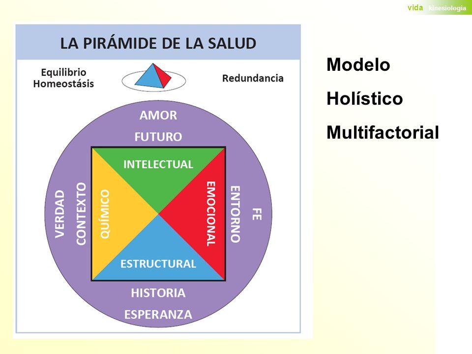Modelo Holístico Multifactorial