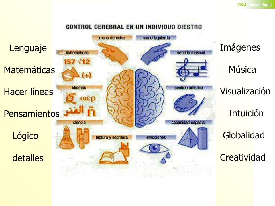 Lenguaje Matemáticas. Hacer líneas. Pensamientos. Lógico. detalles. Imágenes. Música. Visualización.
