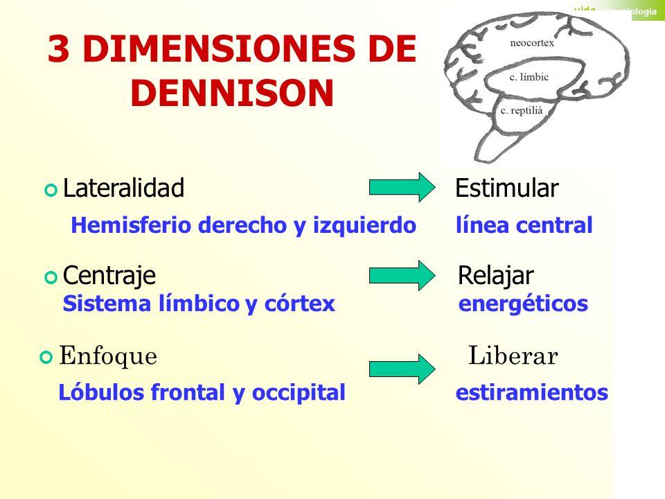 3 DIMENSIONES DE DENNISON
