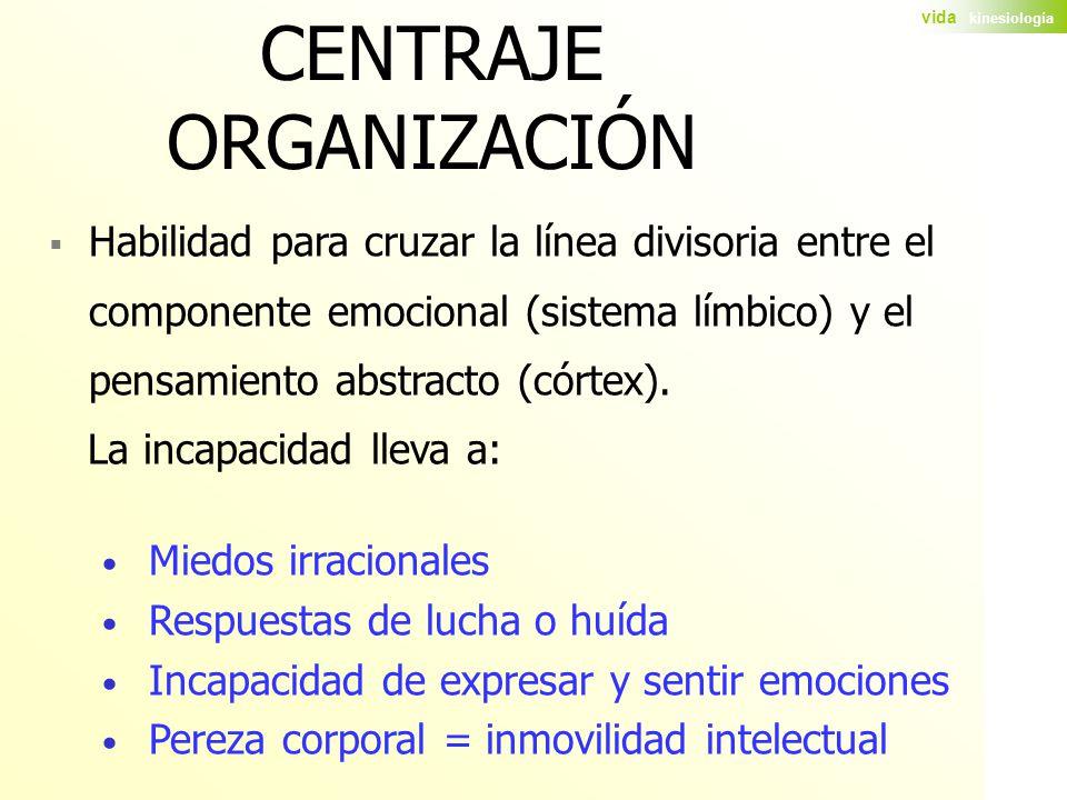 CENTRAJE ORGANIZACIÓN