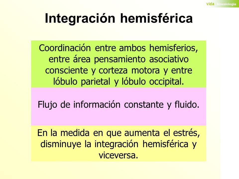 Flujo de información constante y fluido.