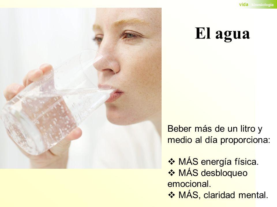 El agua Beber más de un litro y medio al día proporciona: