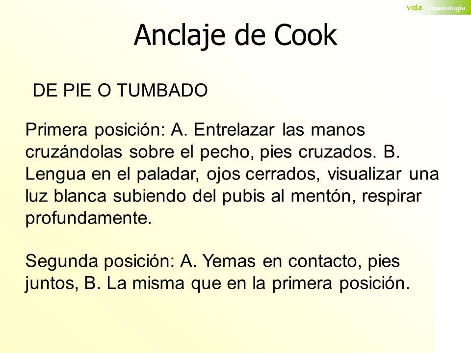 Anclaje de Cook DE PIE O TUMBADO