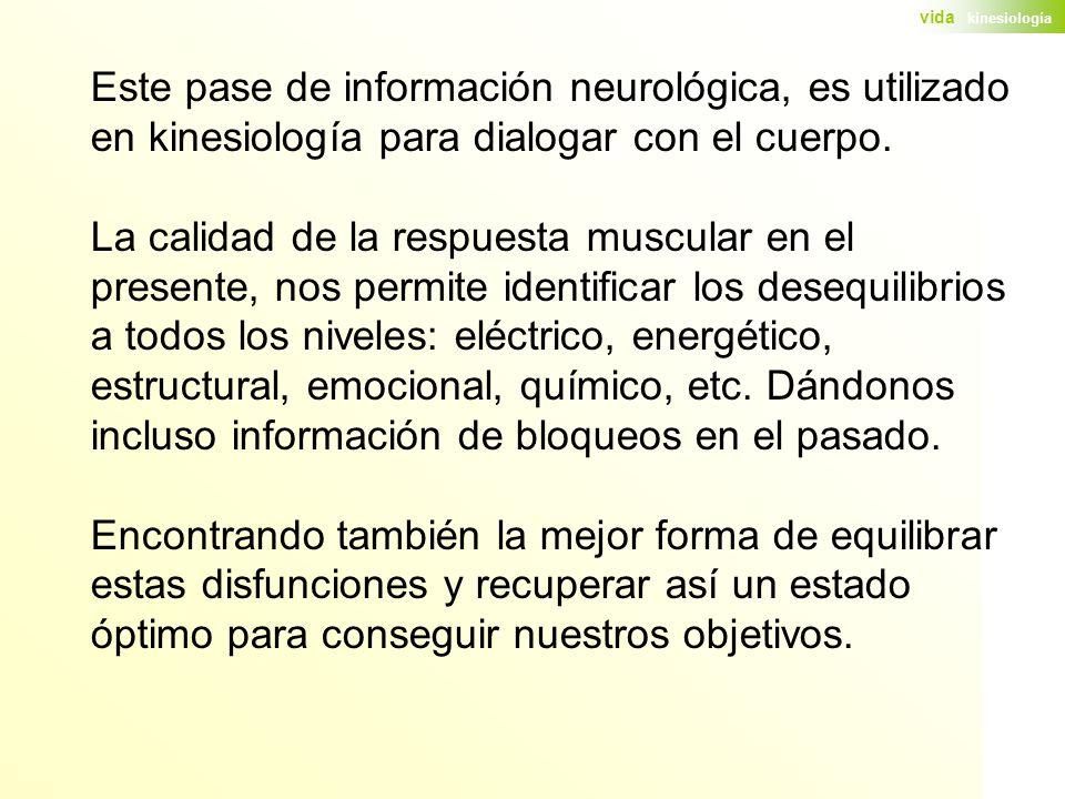 Este pase de información neurológica, es utilizado en kinesiología para dialogar con el cuerpo.