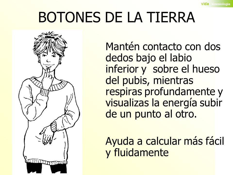 BOTONES DE LA TIERRA