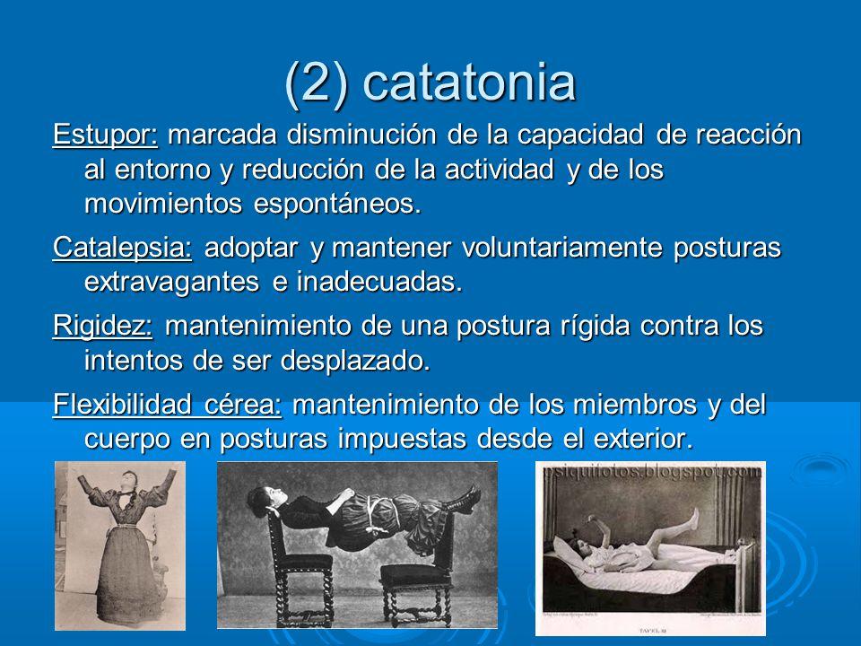 (2) catatonia Estupor: marcada disminución de la capacidad de reacción al entorno y reducción de la actividad y de los movimientos espontáneos.