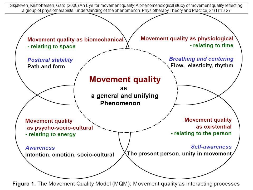Movement quality 17/11/13 as a general and unifying Phenomenon