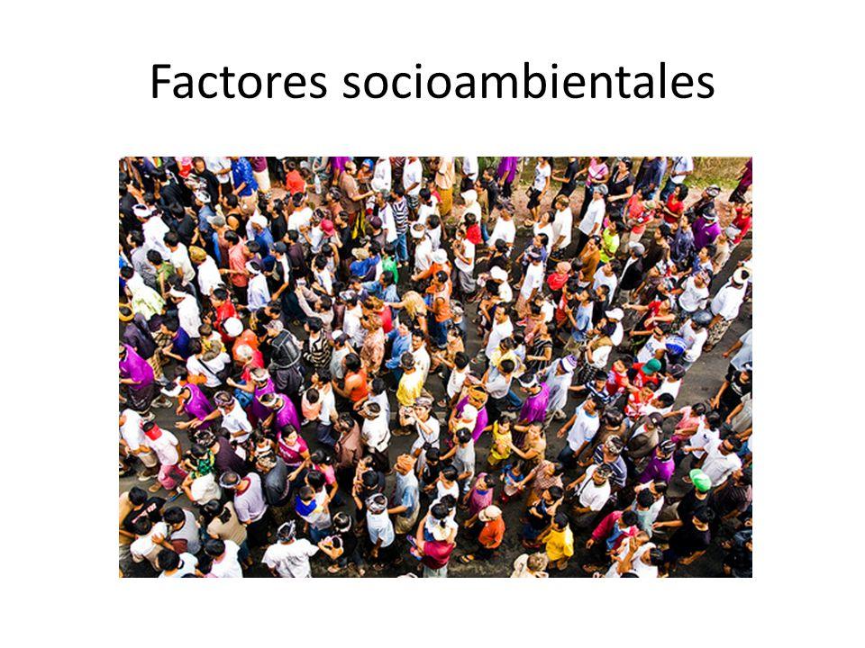 Factores socioambientales