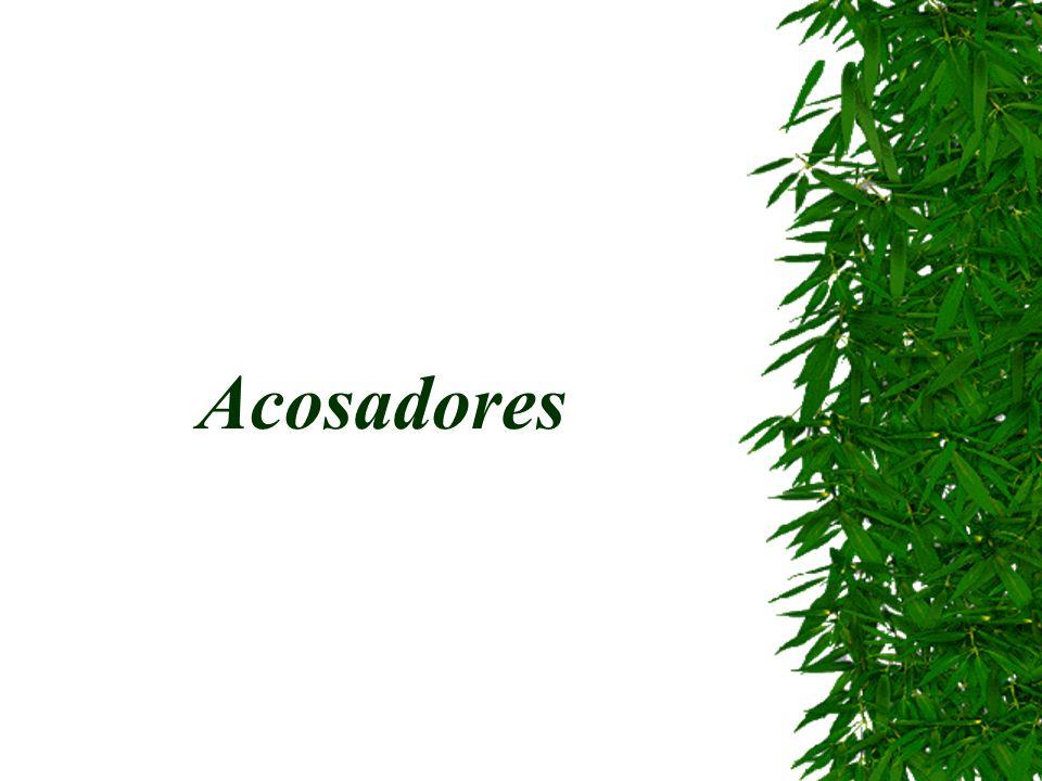 Acosadores