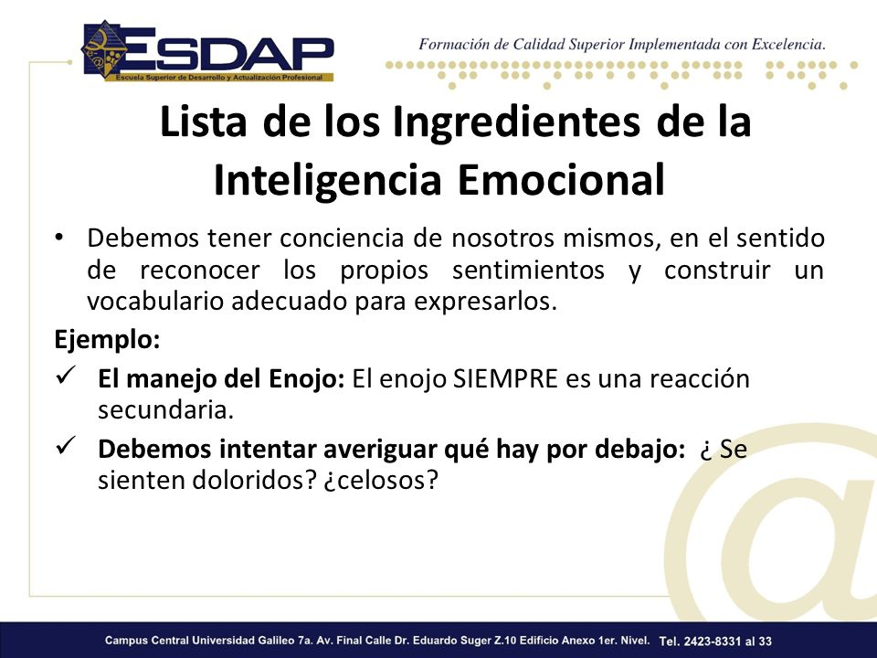 Lista de los Ingredientes de la Inteligencia Emocional