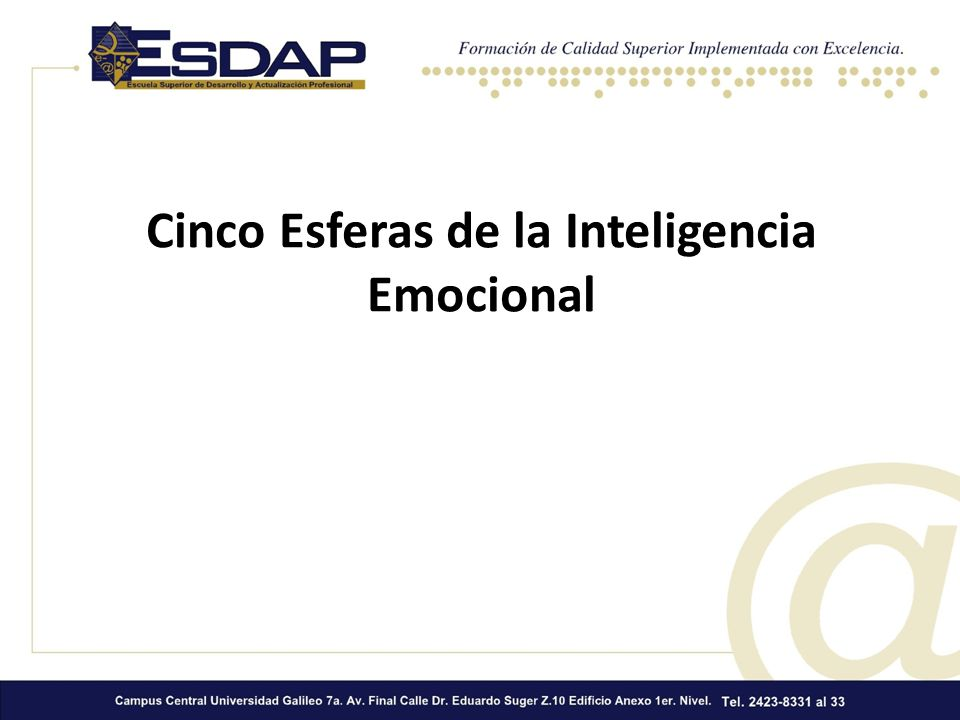 Cinco Esferas de la Inteligencia Emocional