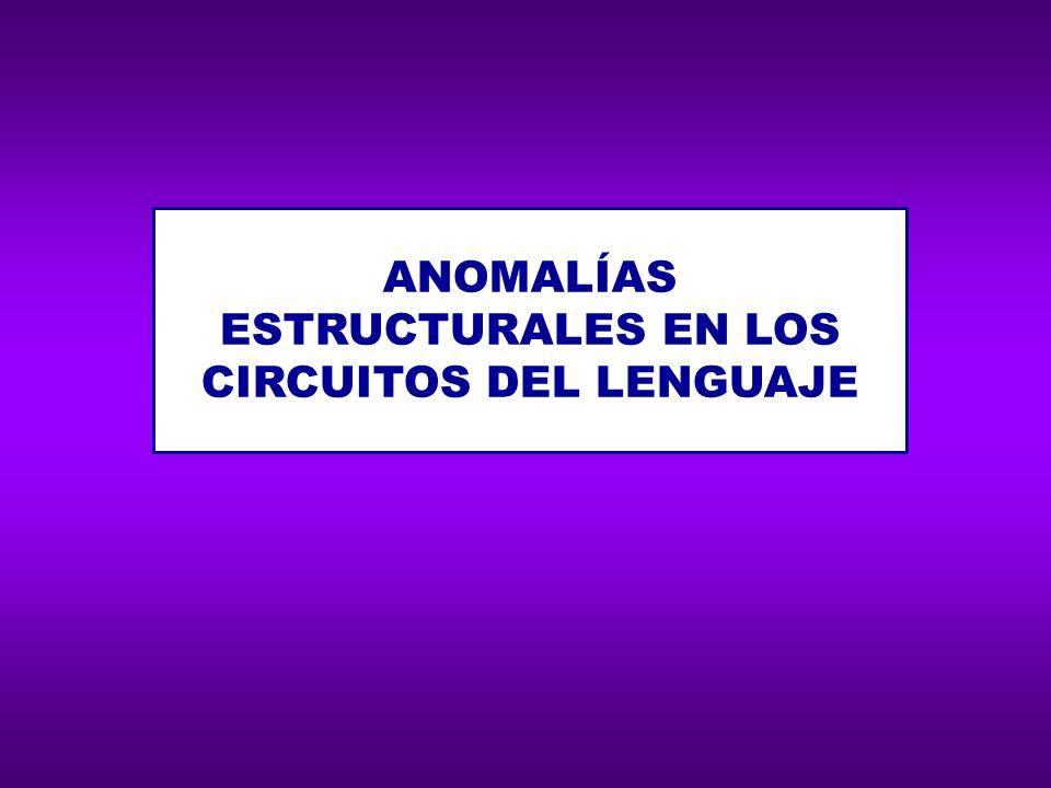 ANOMALÍAS ESTRUCTURALES EN LOS CIRCUITOS DEL LENGUAJE