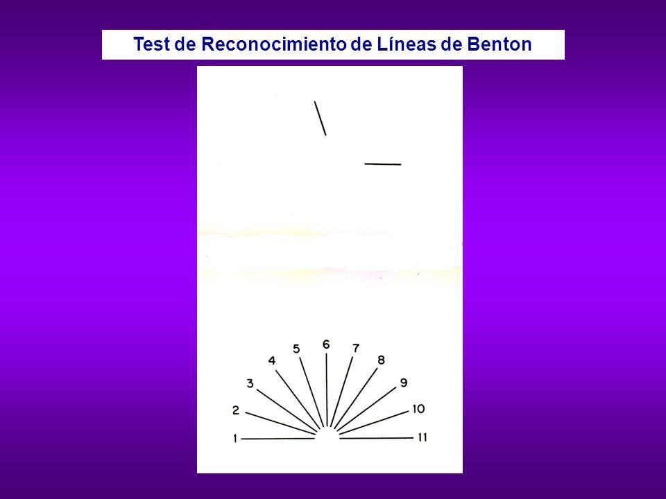 Test de Reconocimiento de Líneas de Benton