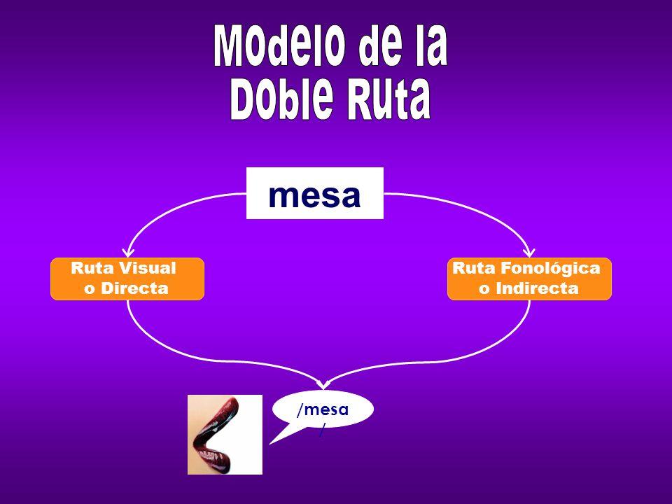 mesa Modelo de la Doble Ruta Ruta Visual o Directa Ruta Fonológica