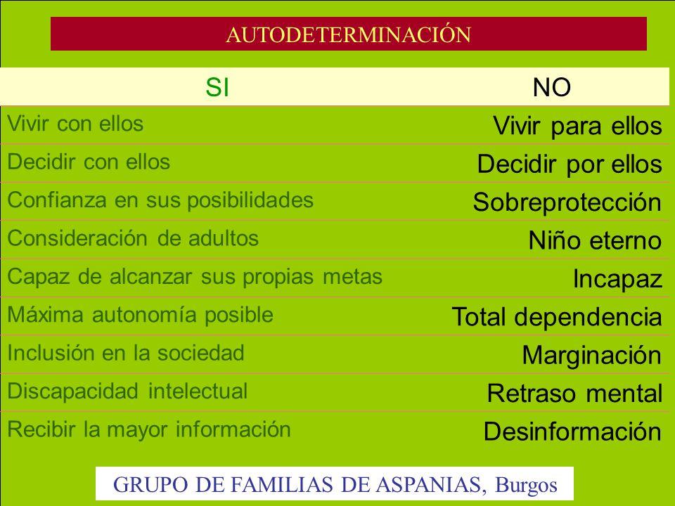 GRUPO DE FAMILIAS DE ASPANIAS, Burgos