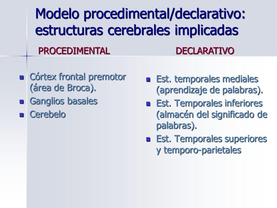 Modelo procedimental/declarativo: estructuras cerebrales implicadas