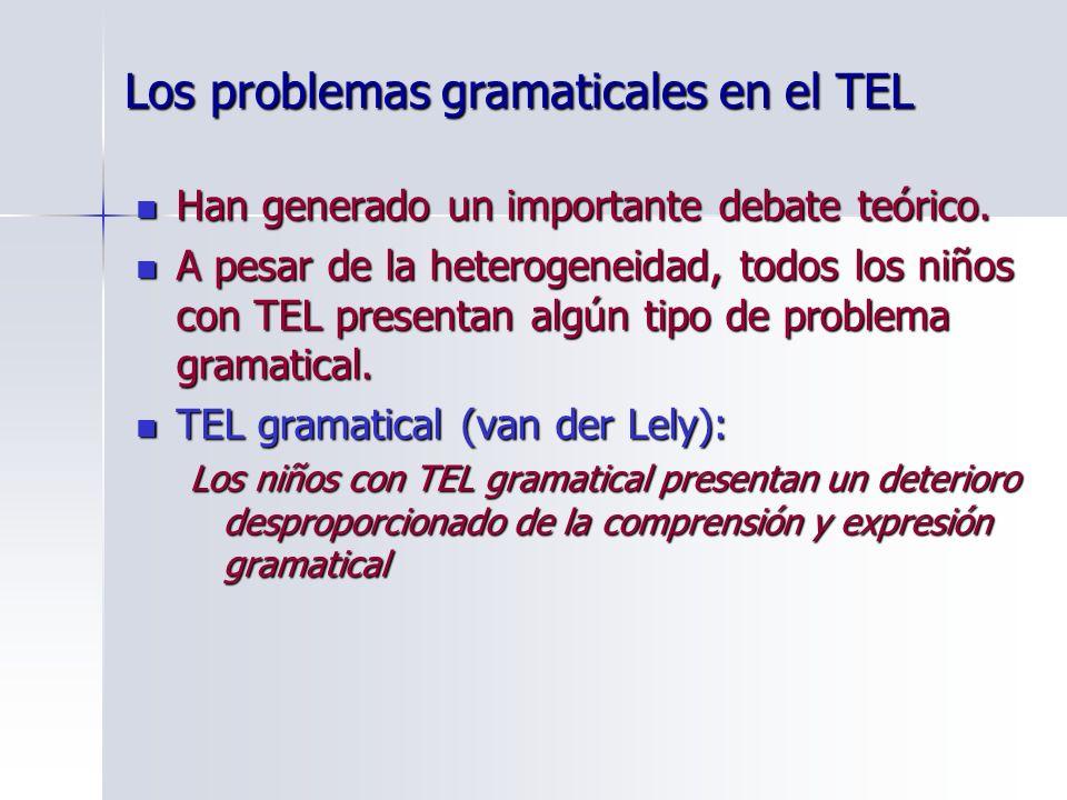 Los problemas gramaticales en el TEL