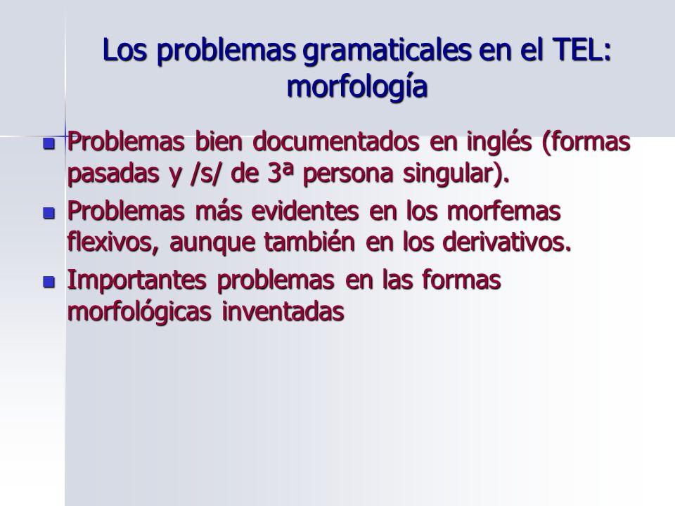 Los problemas gramaticales en el TEL: morfología