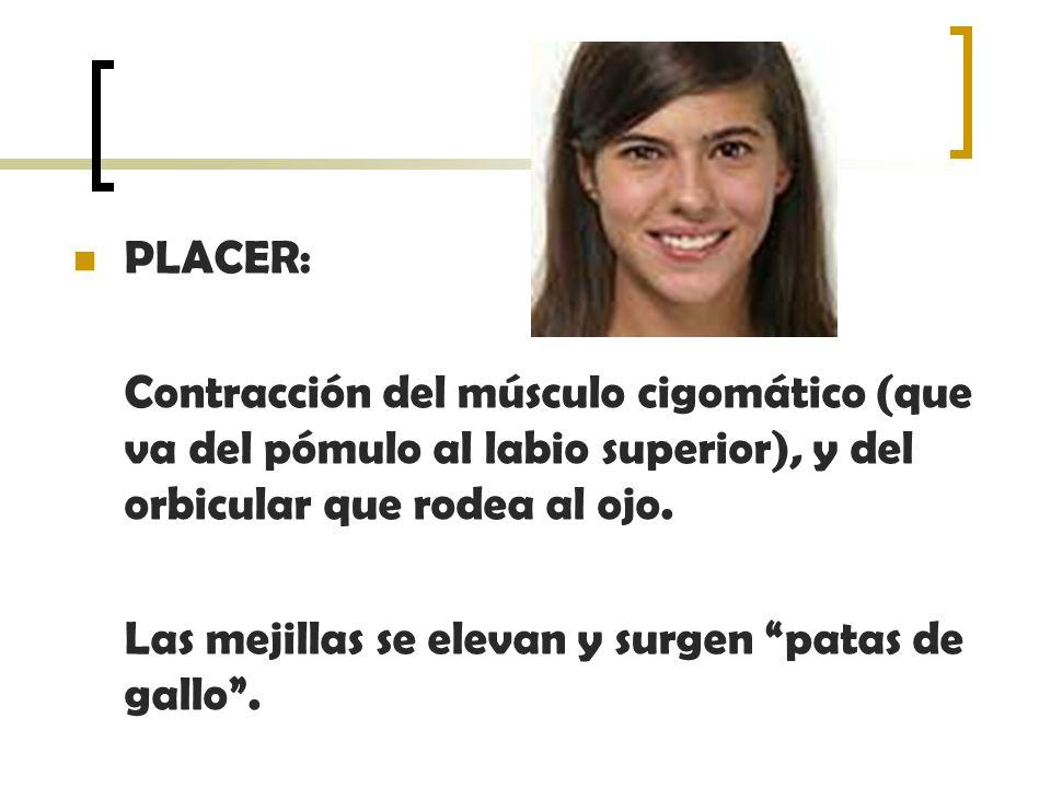 PLACER: Contracción del músculo cigomático (que va del pómulo al labio superior), y del orbicular que rodea al ojo.