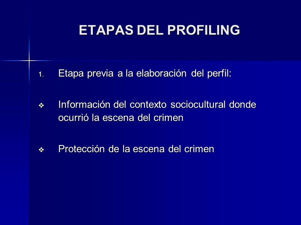 ETAPAS DEL PROFILING Etapa previa a la elaboración del perfil: