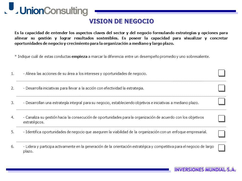 VISION DE NEGOCIO