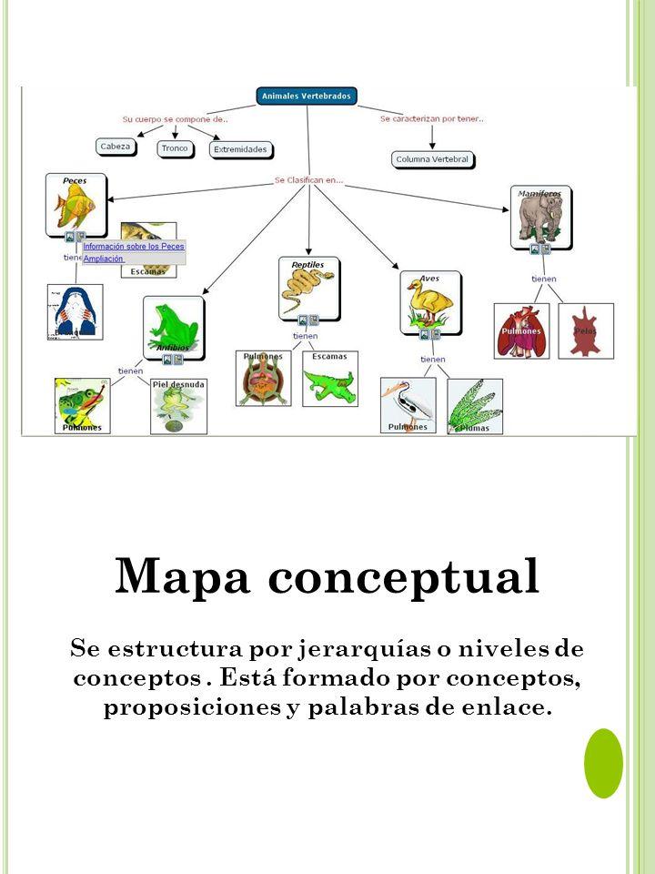 Mapa conceptual Se estructura por jerarquías o niveles de conceptos .