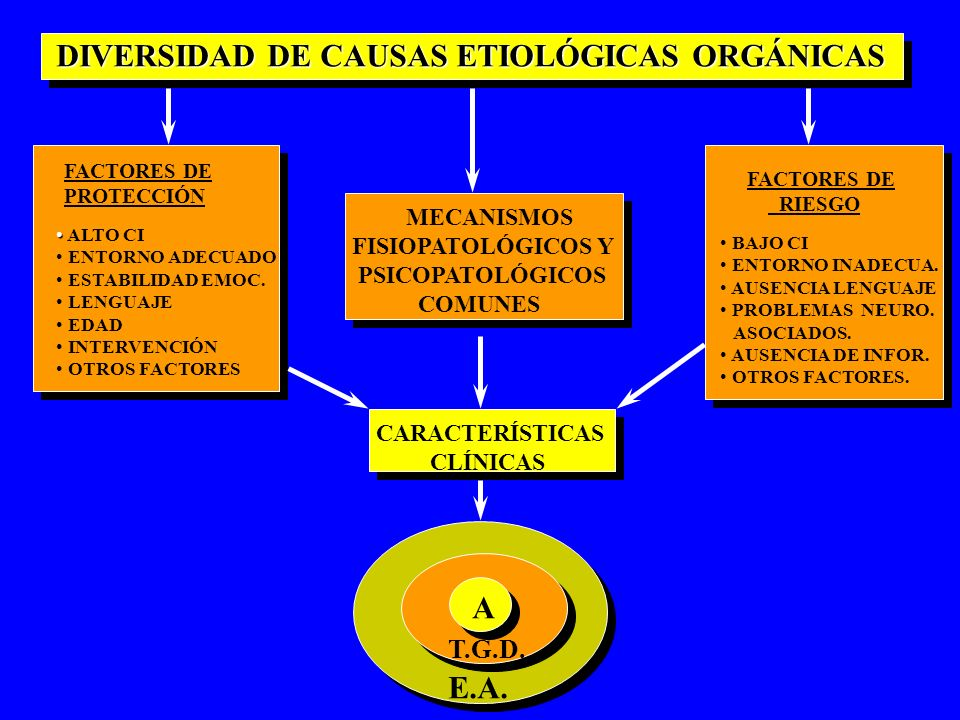 DIVERSIDAD DE CAUSAS ETIOLÓGICAS ORGÁNICAS