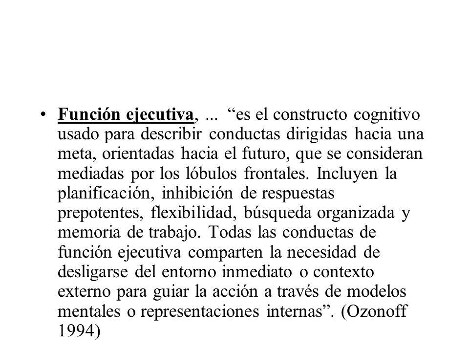 Función ejecutiva, ...