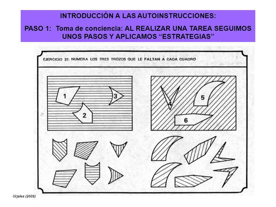 INTRODUCCIÓN A LAS AUTOINSTRUCCIONES: