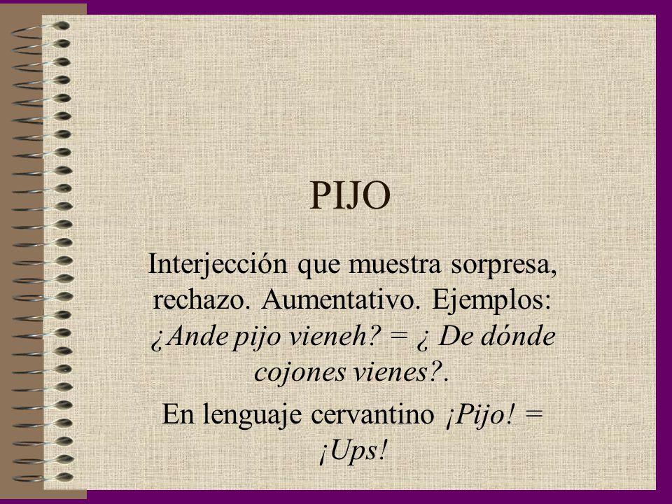 En lenguaje cervantino ¡Pijo! = ¡Ups!
