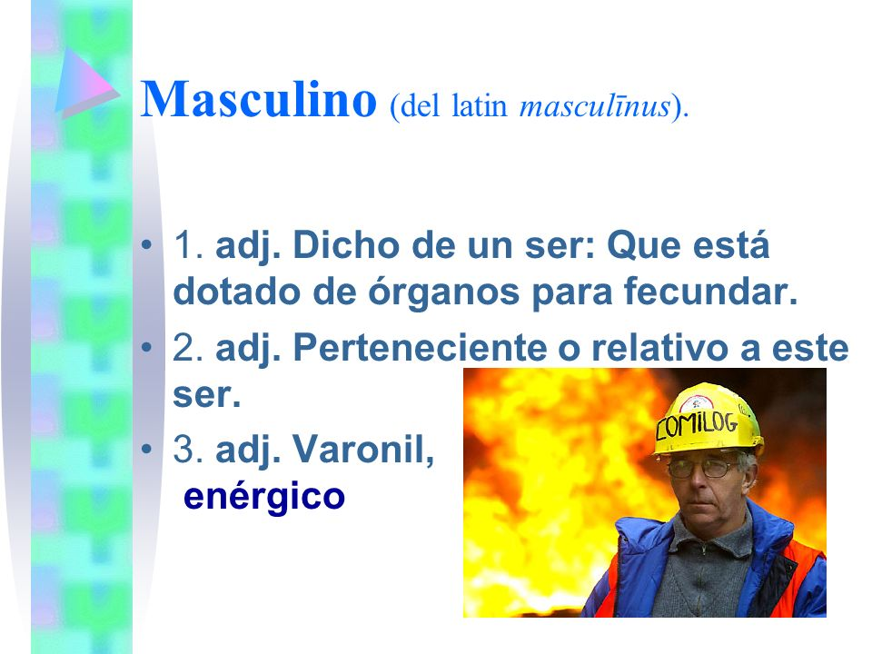 Masculino (del latin masculīnus).