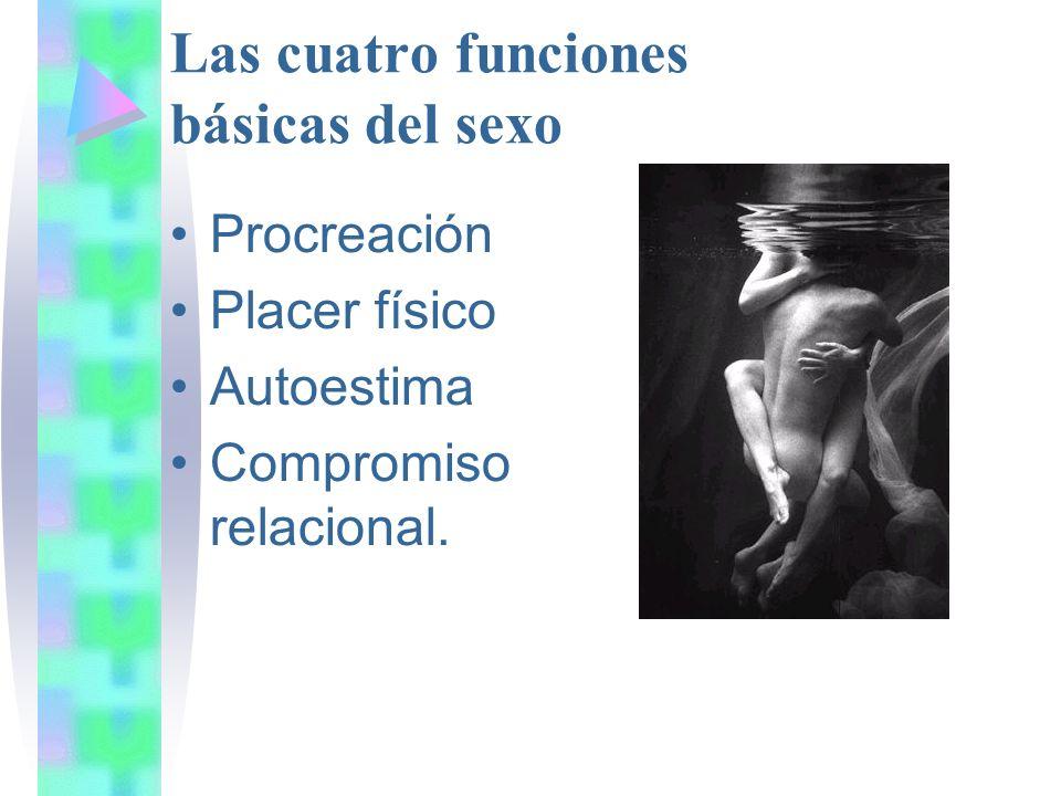 Las cuatro funciones básicas del sexo