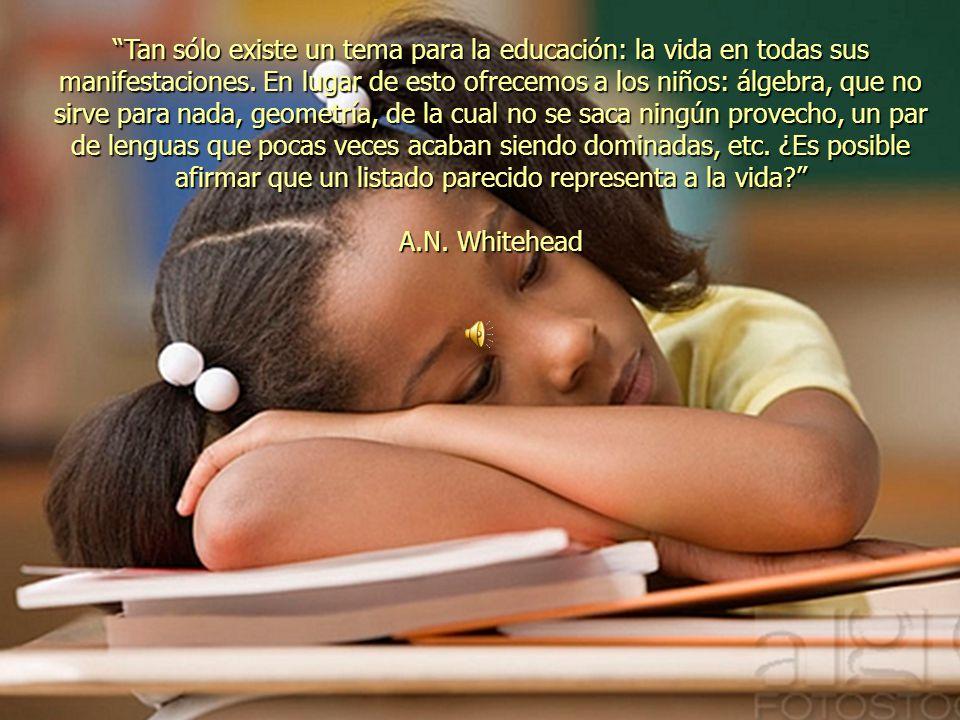 Tan sólo existe un tema para la educación: la vida en todas sus manifestaciones.