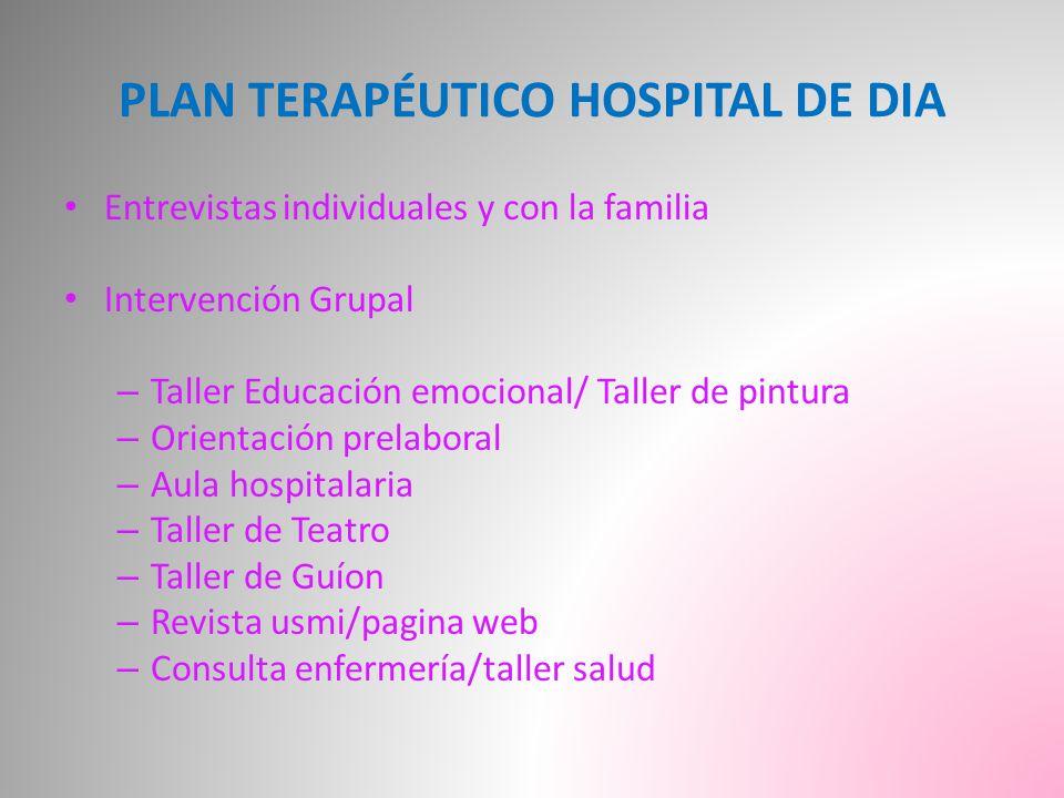 PLAN TERAPÉUTICO HOSPITAL DE DIA