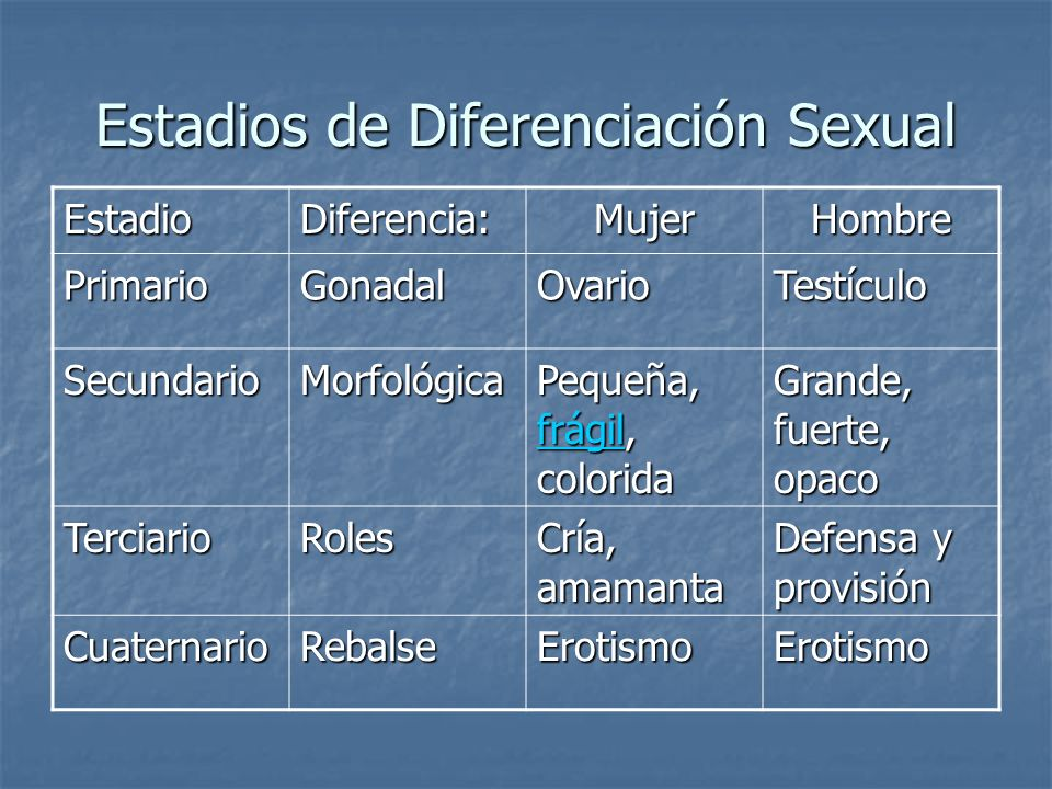 Estadios de Diferenciación Sexual
