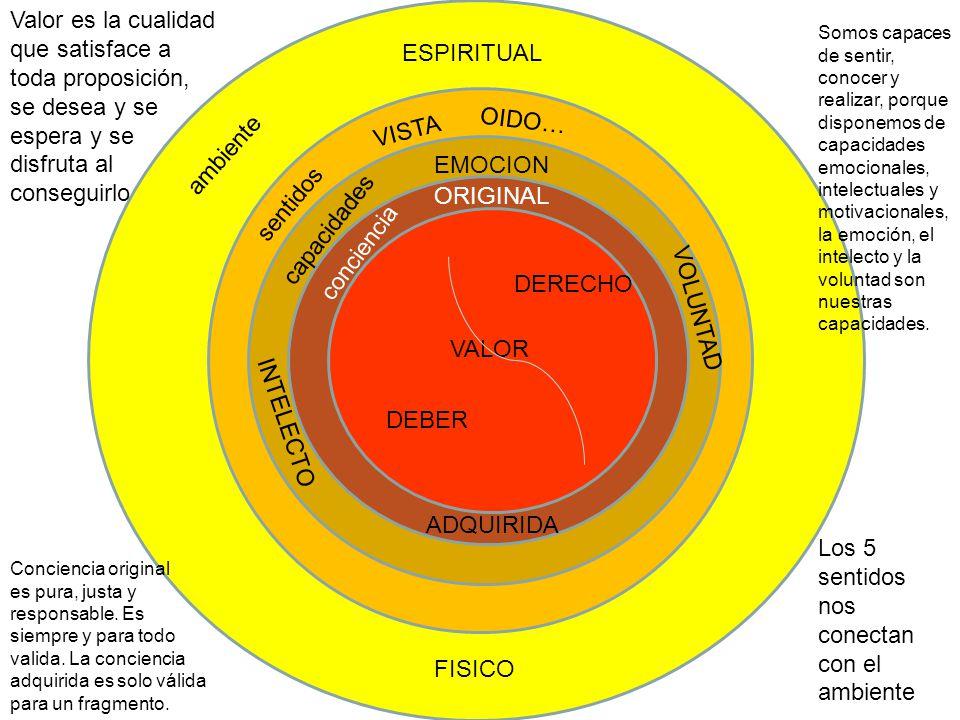 Los 5 sentidos nos conectan con el ambiente