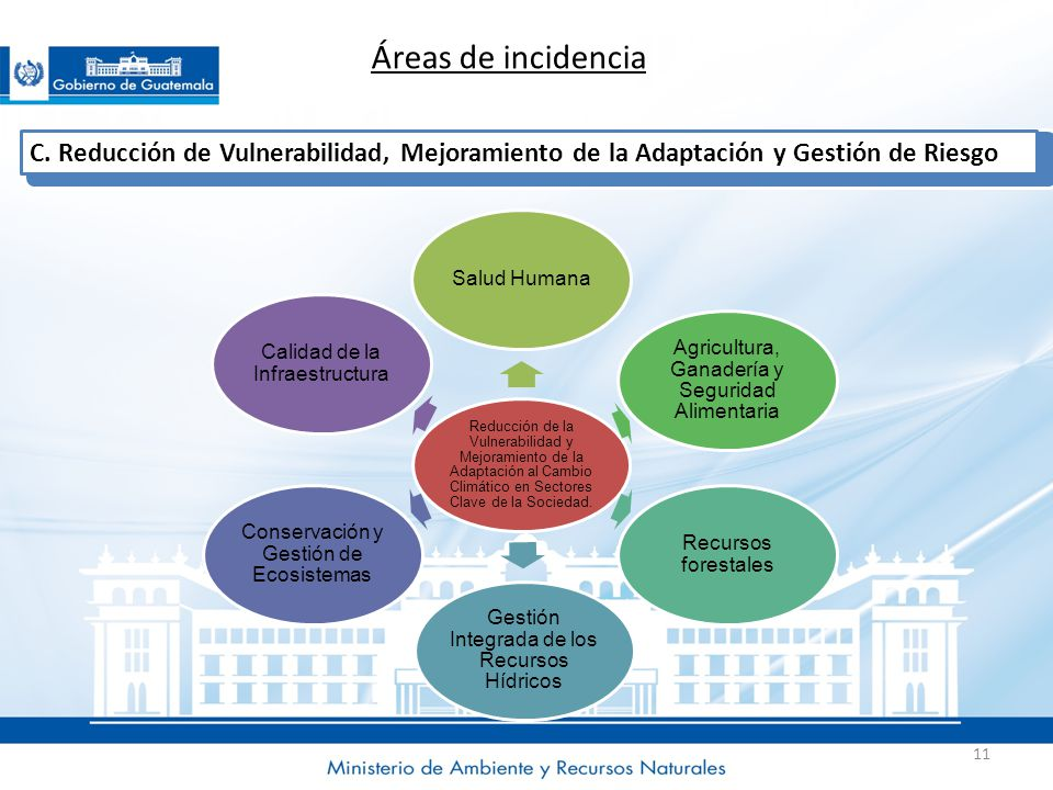 Áreas de incidencia C. Reducción de Vulnerabilidad, Mejoramiento de la Adaptación y Gestión de Riesgo.