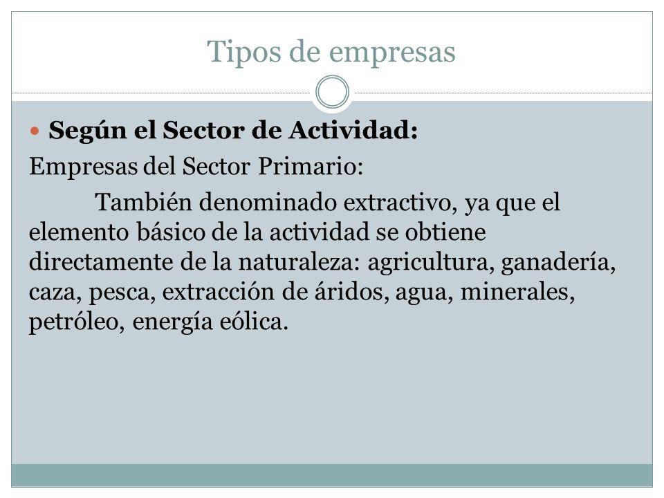 Tipos de empresas Según el Sector de Actividad: