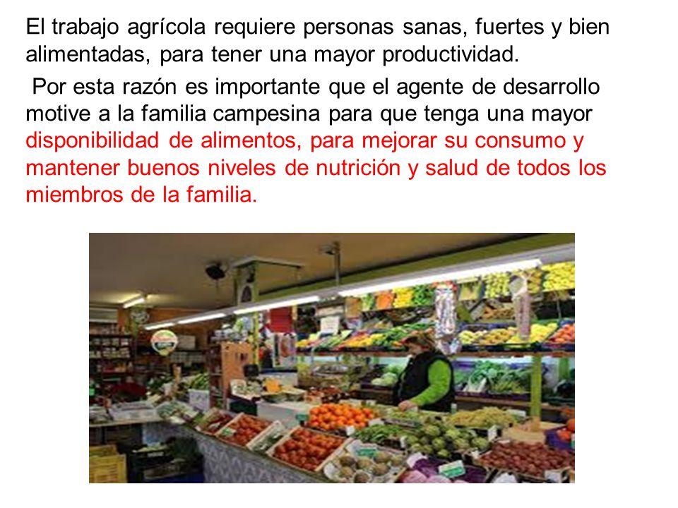 El trabajo agrícola requiere personas sanas, fuertes y bien alimentadas, para tener una mayor productividad.