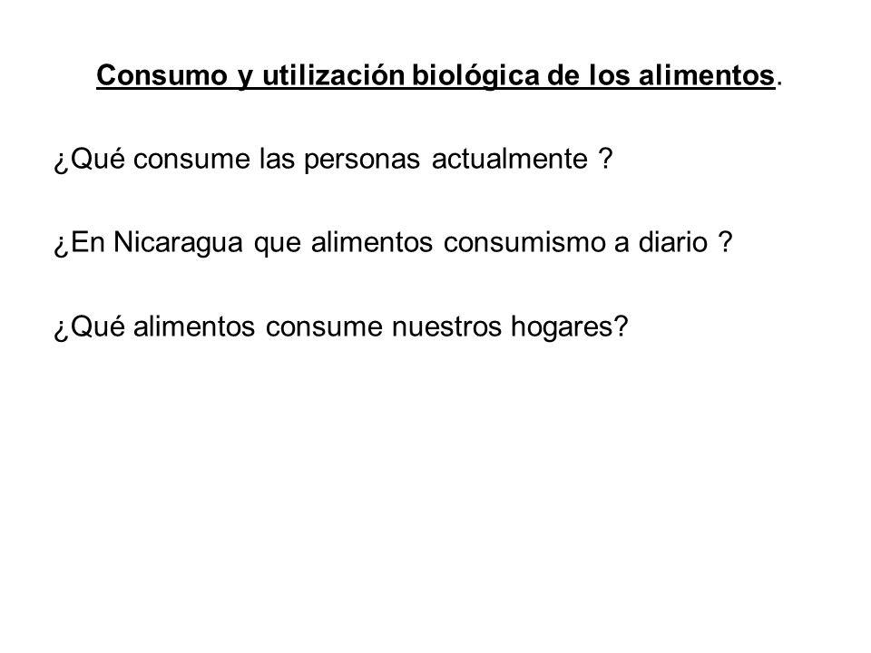 Consumo y utilización biológica de los alimentos.