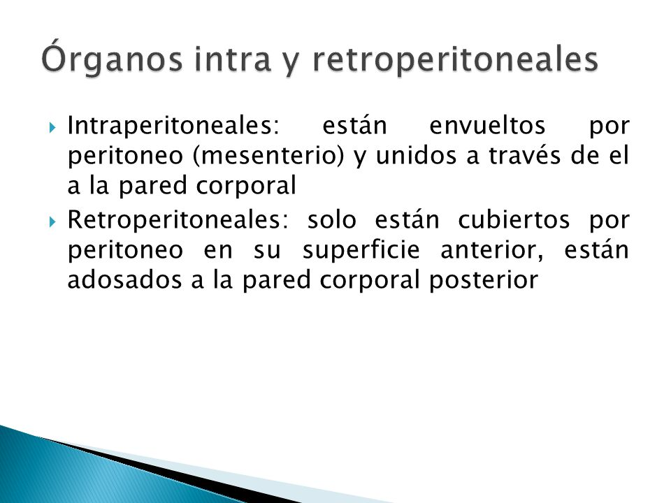 Órganos intra y retroperitoneales