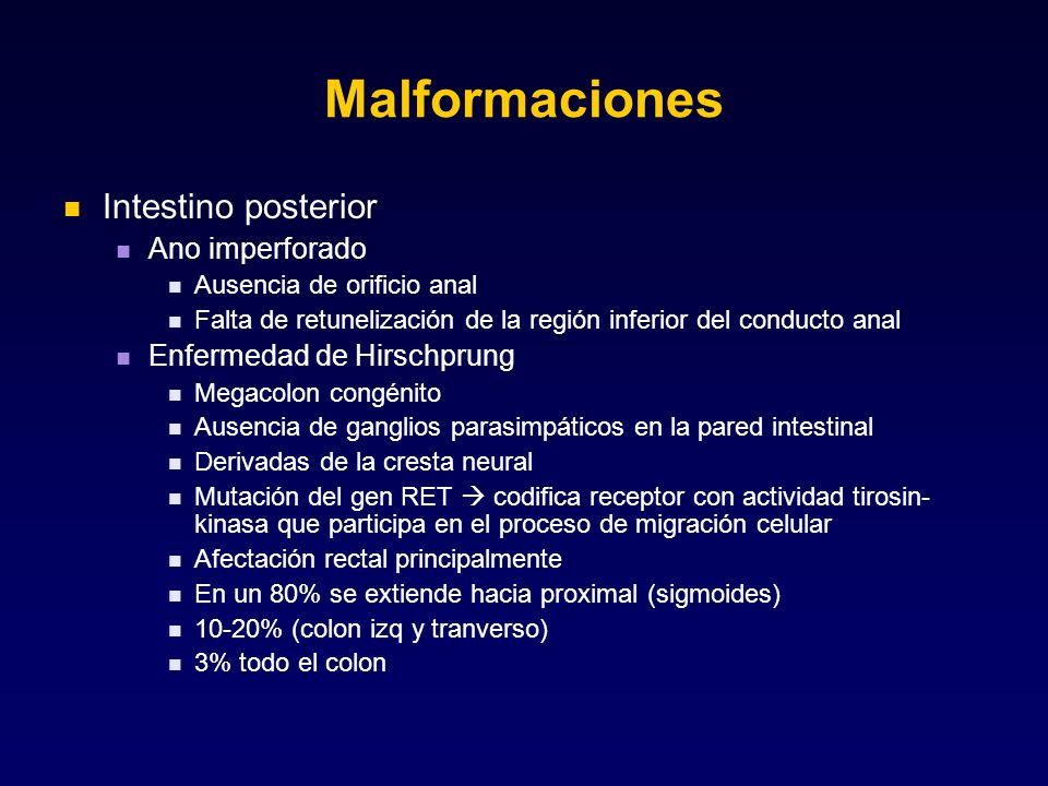 Malformaciones Intestino posterior Ano imperforado