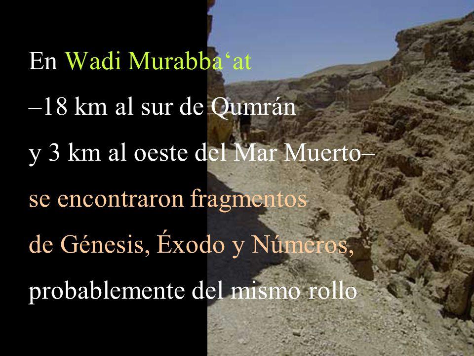 y 3 km al oeste del Mar Muerto– se encontraron fragmentos