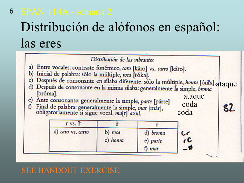 SPAN 114A - semana 2 Distribución de alófonos en español: las eres
